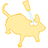 Optogenetics icon